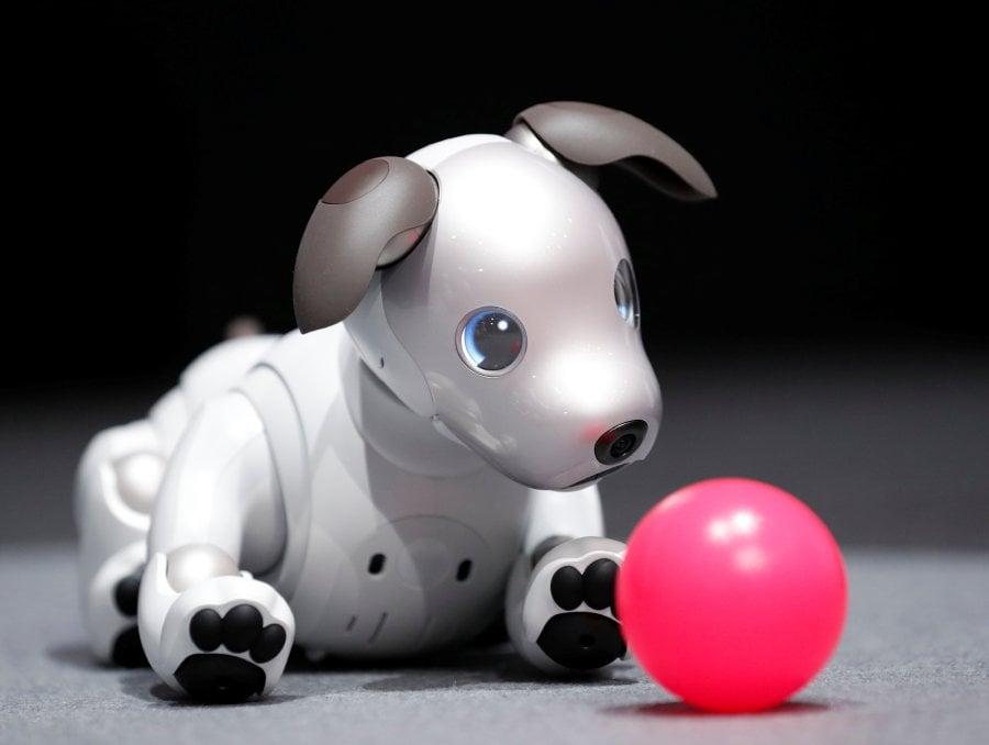 Image result for Sony revives robot pet dog