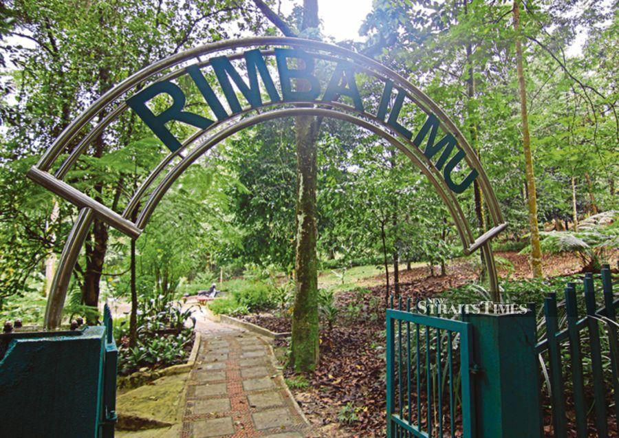 Malaysia's Forest of Knowledge or Rimba Ilmu  is a secret place to most Malaysians despite the fact that millions of Kuala Lumpur residents live within a few kilometres of this forest garden located in the grounds of Universiti Malaya. Established in 1972, this scientific garden is invaluable for academic research. It is also open to the public and its 65,000 herbarium collection and library is also accessible for academic research. Walk the trails here to familiarise yourself with palms, ferns, tropical fruit trees, medicinal plants and orchids. There is even a bambusetum.  The garden isn't open on the weekends or public holidays  so it's best to check the website (www.rimba.um.edu.my) before setting off for time in this botanical bazaar. The gardens are located behind the university sports arena.