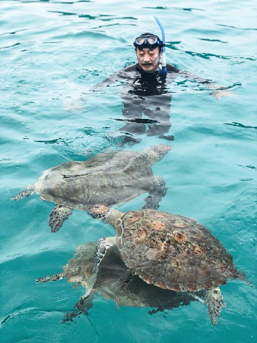 Berjaya Group founder Tan Sri Vincent Tan swimming with the sea turtles in the sea.