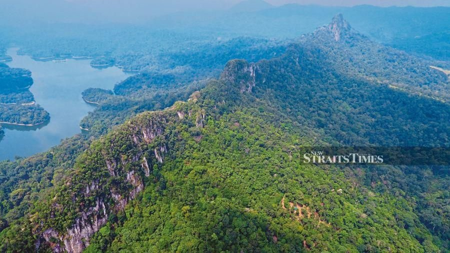 Protected Areas are fundamental to conserving biodiversity, to securing vital ecosystem services like clean water and storm protection, to local livelihoods, to climate change adaptation, and to achieving the Sustainable Development Goals. - NSTP file pic, for illustration purposes only