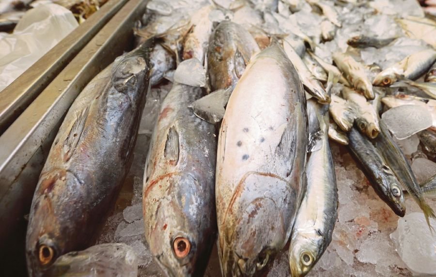 Fish importers free to source from any country: LKIM   New