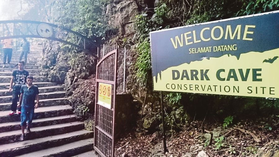 The Dark Cave is said to be the longest cave system in the Batu Caves tower karst. Biologically it is one of the best examples of a Southeast Asian cave. FILE PIC