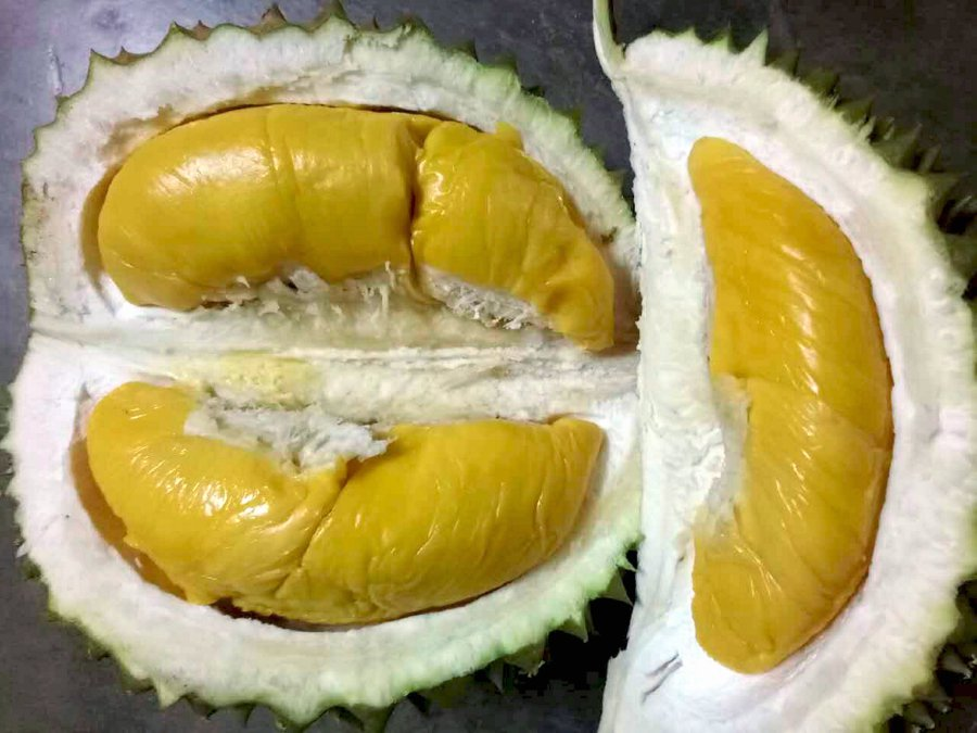 new preservation tech will help make durian cheaper in future