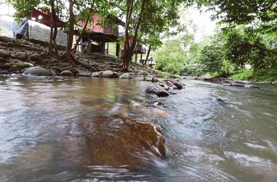 Places: Cool Janda Baik nature hotspot | New Straits Times