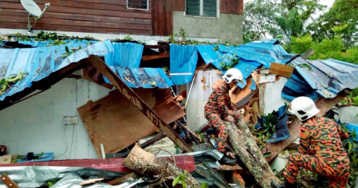 110 trees fall onto roads, houses, vehicles amidst strong winds in Sabah