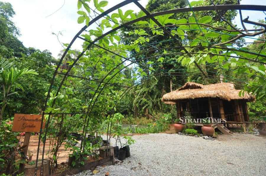 The Permaculture Garden at The Datai Langkawi.