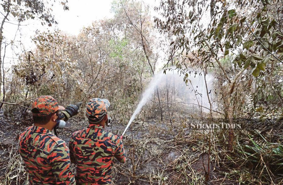 Open Burning Cases In Malaysia Have Doubled Since Jan Nsttv