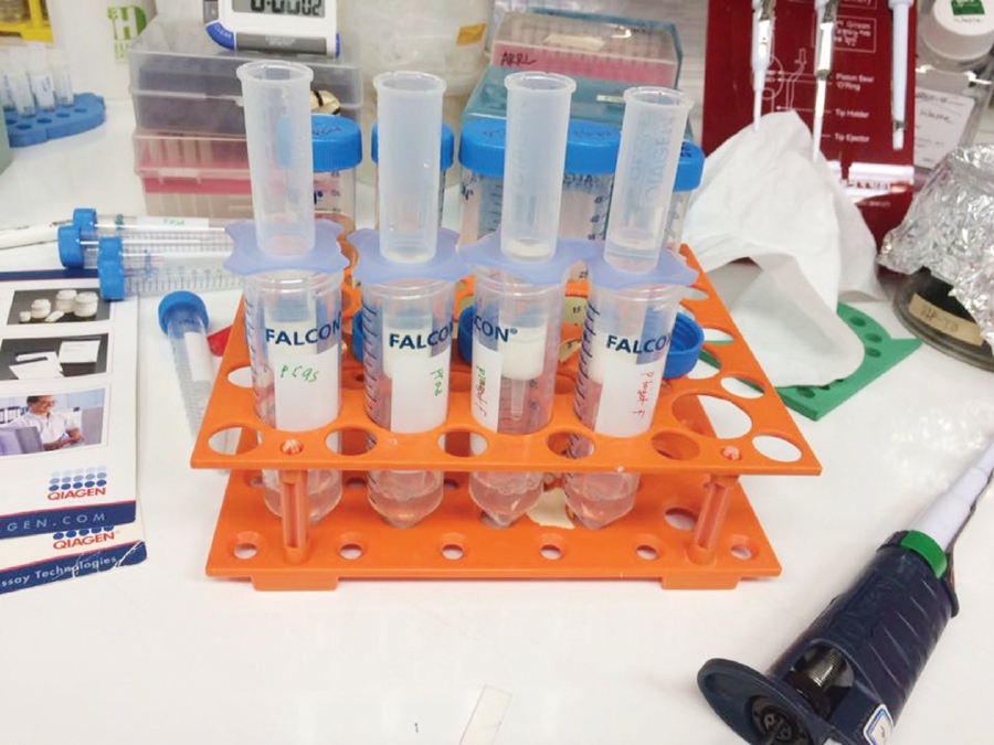 Test tubes at the Universiti Putra Malaysia Biotechnology and Biomolecular Sciences laboratory. Access to laboratory facilities have been restricted during the Movement Control Order.