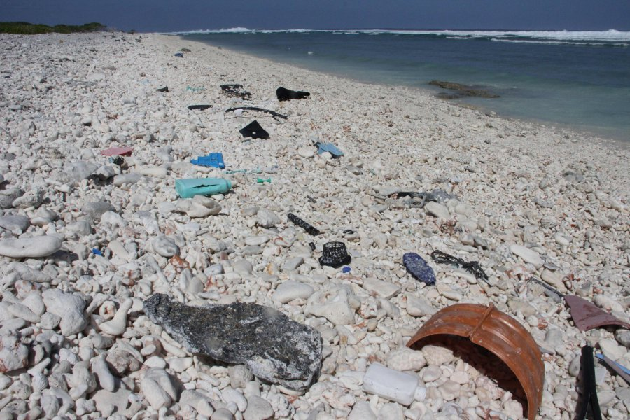 Great Pacific Garbage Patch might be 16 times bigger than we thought