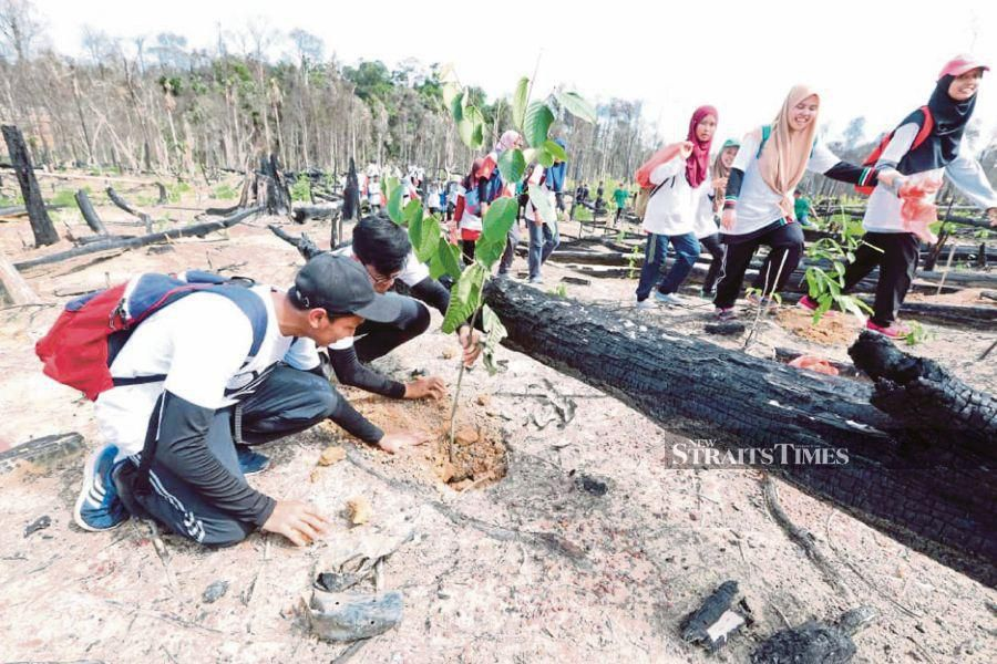 International Islamic University Malaysia students planting saplings as part of the 'Go Green With Sultan