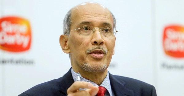 Lower palm oil prices drag SD Plantation's Q3 profits to ...