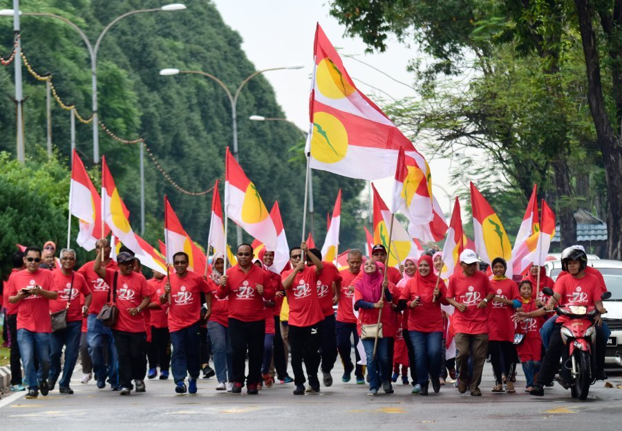 Image result for UMNO Flag