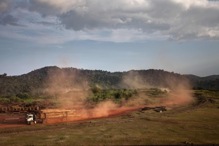 (File pix) Photo shows logging trucks. Climate change combined with galloping tropical deforestation is cutting off wildlife from life-saving cooler climes, heightening the risk of extinction, researchers said. AFP Photo