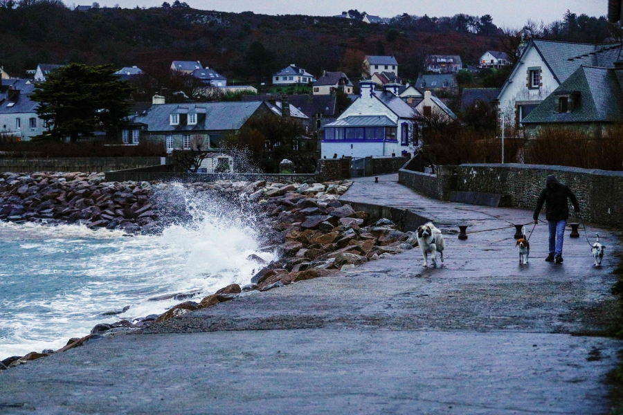 A man walks with his dogs as waves and strong winds hit the coast of Le Becquet, northwestern France on Dec 27, 2020, as Storm Bella strikes the coast of Britanny and Normandy. (Photo by Sameer Al-DOUMY / AFP)