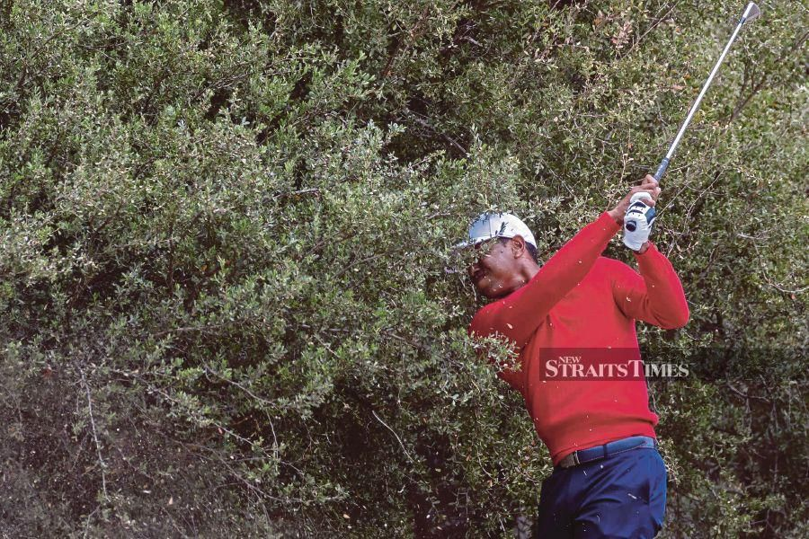US team captain Tiger Woods plays out of the rough to the 13th hole on the final day of the Presidents Cup golf tournament in Melbourne. AFP