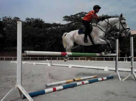 Horse Force 16 Year Old National Junior Equestrian Rider