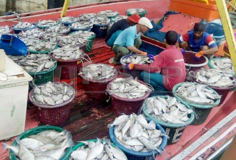 Multi-agency task force to combat illegal fishing