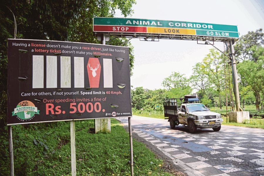 (File pix) In this photo taken on June 18, 2019, vehicles drive past a sign-board for the vehicles speed limit on National Highway 37 adjoining Kaziranga National Park, some 220 km from Guwahati, the capital city of India's northeastern state of Assam. AFP Photo