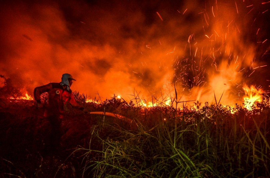 Officials of regional disaster management agency try to douse a peat land forest fire, in Pekanbaru, in Riau province, on July 31, 2019. (Photo by WAHYUDI / AFP)