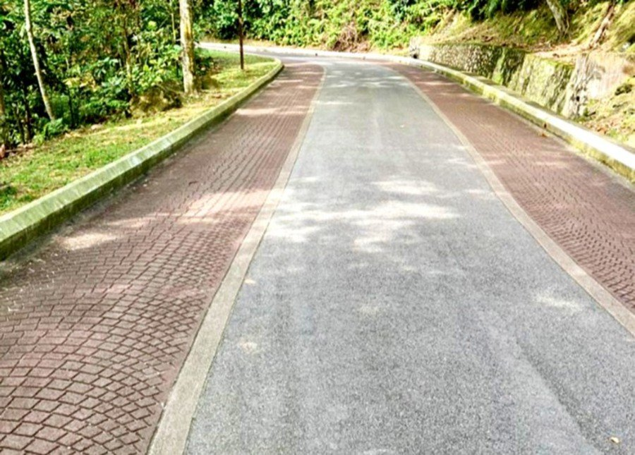 Well maintained pathways in Bukit Kiara. pic by Pathma Naban