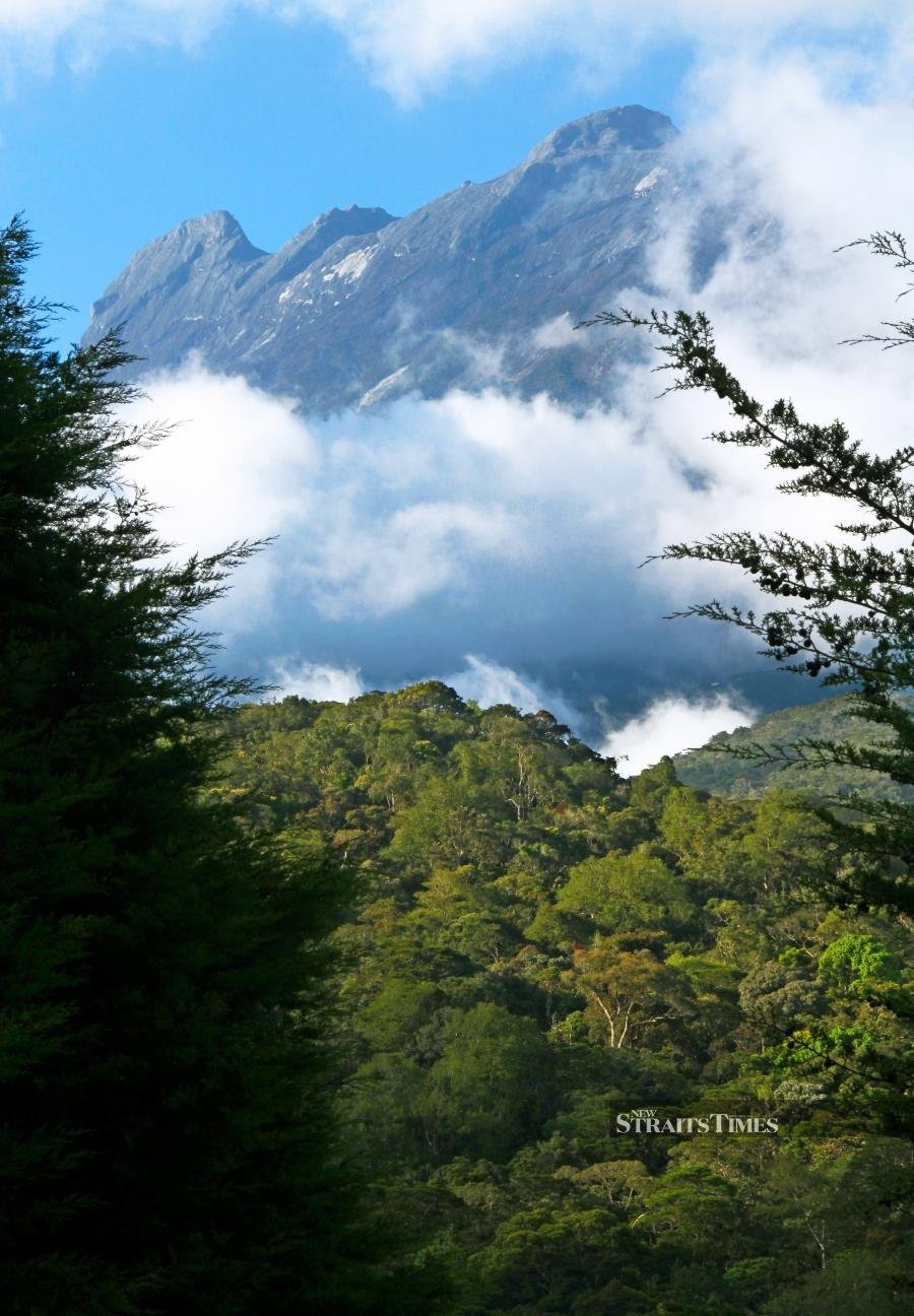 Malaysia's highest peak at 4,095m is clearly visible from many parts of the state. While the challenge of a two-day climb to the summit attracts adventurous travellers, the cool air and plant diversity also appeals to armchair travellers content on lazing around the park headquarters. Climbers overnight half-way at Laban Rata and head off in the darkness of the second morning to reach the summit for sunrise. While the climb doesn't require mountaineering skills, climbers need to be fit as it's no stroll in the park. Being a Unesco World Heritage Site, the park is recognised as an epicentre of biological diversity with 5,000 plant species within its 750 sq km, as well as a venue for various adventure activities.