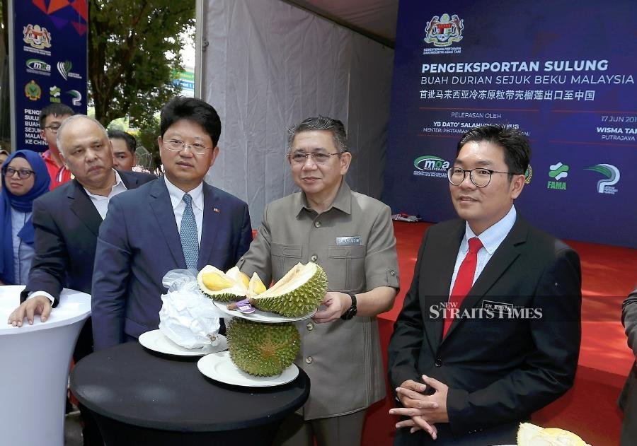 Minister Datuk Salahuddin Ayub said the export protocol was signed on Aug 20 last year in Beijing, China, adding that exports of the king of fruits was expected to contribute close to RM500 million to the nation's total export value annually. - NSTP/AHMAD IRHAM MOHD NOOR