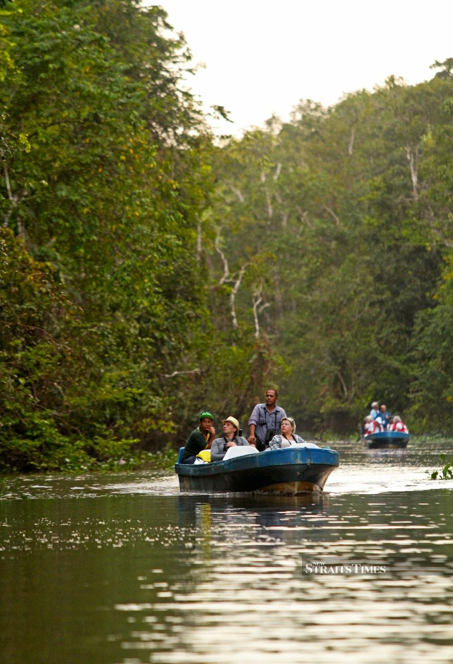 Much of Malaysia was once covered by lowland rainforest, high altitude montane forests and coastal mangroves.