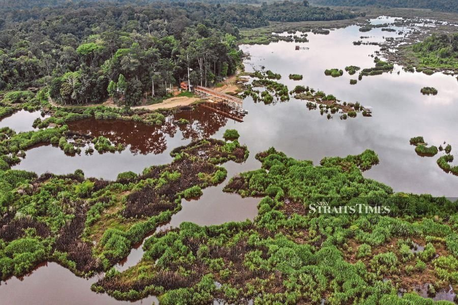 Malaysia became a member of the convention  by listing Tasik Bera in Pahang  as the first Ramsar site in 1994. - NSTP/File pic
