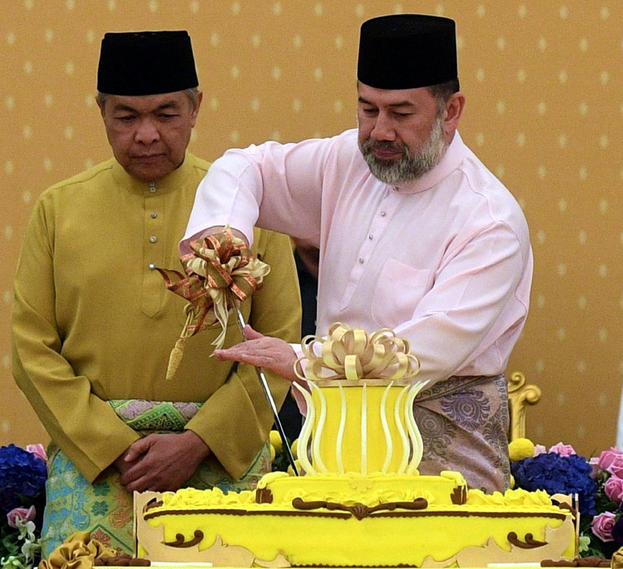 Agong Graces Royal Tea Reception In Conjunction With