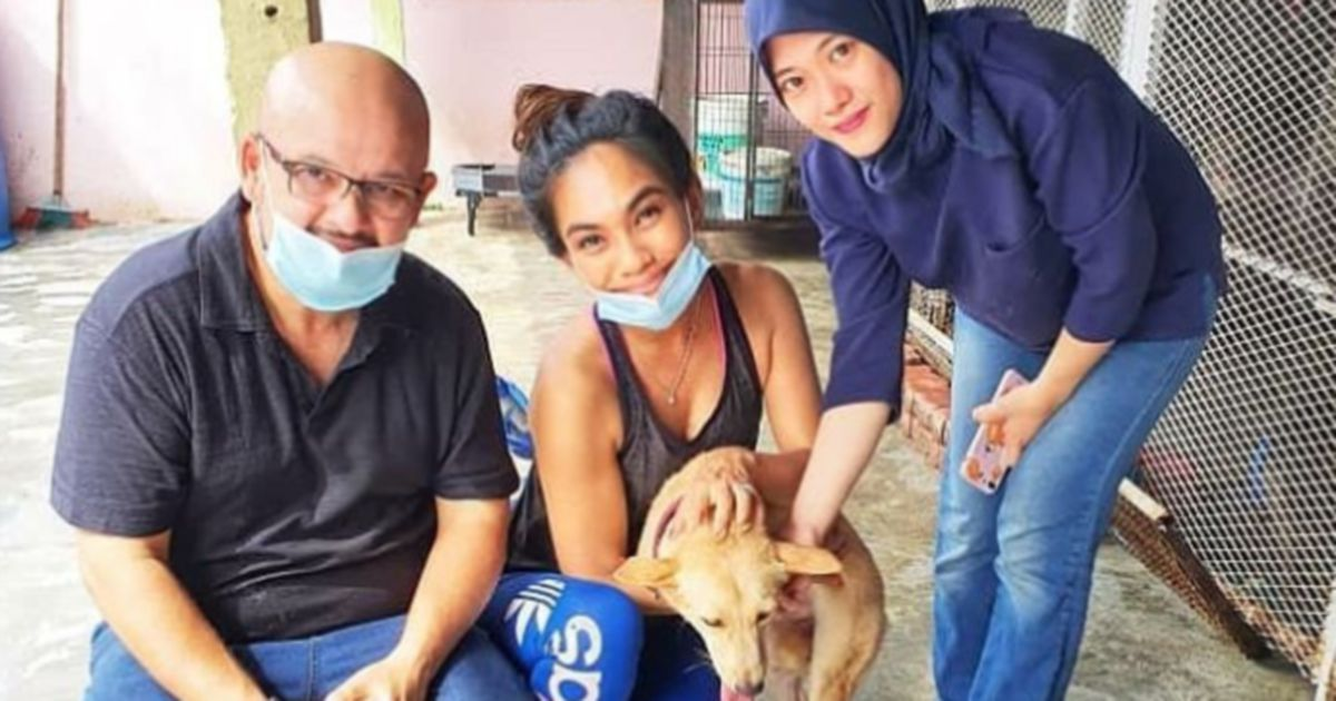 Showbiz Harith Iskander Adopts 2 Legged Dog