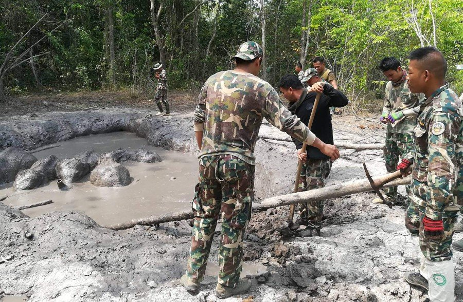 This recent undated handout photo released on March 30, 2019 by Thailand's Department of National Parks, Wildlife and Plant Conservation shows park rangers attempting to dig around the rim of a mud pit to help out the baby elephants trapped in northeastern Prachinburi province. - Six baby elephants separated from their parents and trapped in a muddy pit for days have been rescued by park rangers in rural Thailand, officials said on March 30, 2019. Thailand's Department of National Parks, Wildlife and Plant Conservation / AFP
