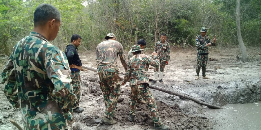 This recent undated handout photo released on March 30, 2019 by Thailand's Department of National Parks, Wildlife and Plant Conservation shows park rangers attempting to dig around the rim of a mud pit to help out the baby elephants trapped in northeastern Prachinburi province. - Six baby elephants separated from their parents and trapped in a muddy pit for days have been rescued by park rangers in rural Thailand, officials said on March 30, 2019. AFP / Thailand's Department of National Parks, Wildlife and Plant Conservation