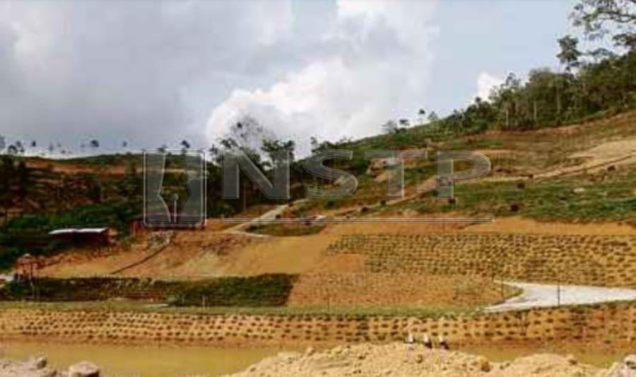 The Valley has 600 acres allocated for homesteads divided into two phases