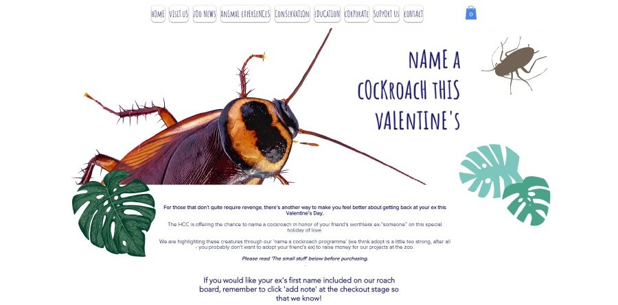 Celebrate V-Day by naming a cockroach after your ex | New