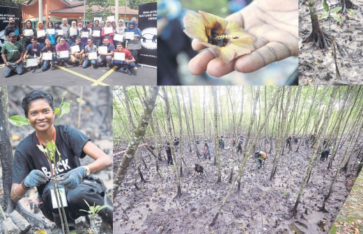 Clockwise from below: 130 Saplings being planted; Learning about our precious ecosystems; Rekha Krishnan believes that action speaks louder than words; Young environmentalists; The sea hibiscus; New life.