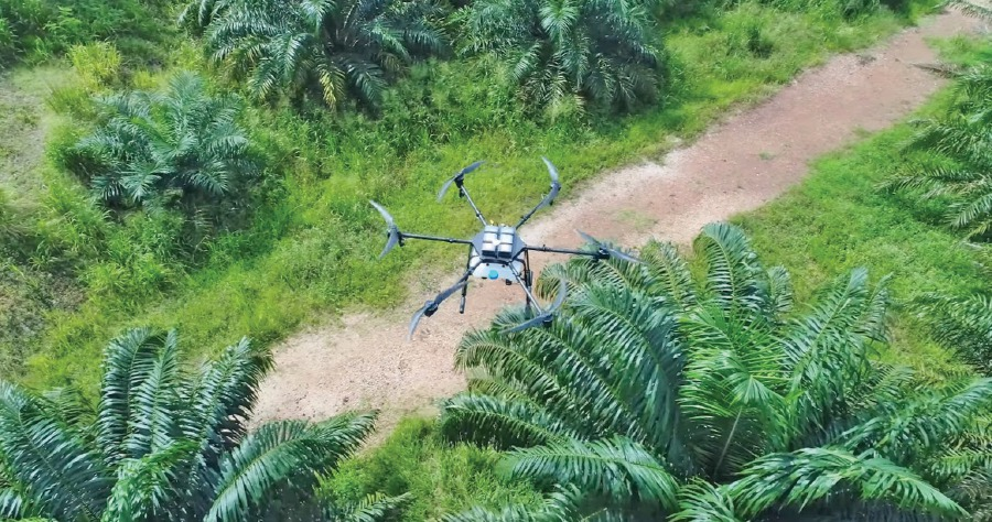 Innovation: Drones home in on plantations | New Straits
