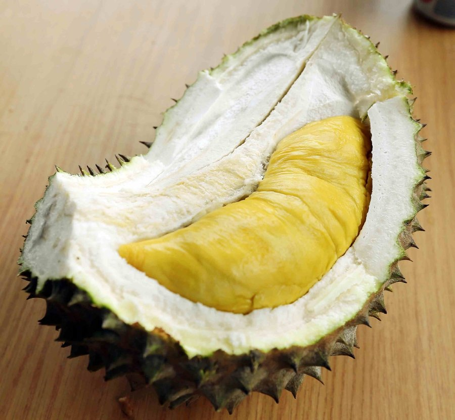 Durian makes appearance at Sweden's Disgusting Food Museum