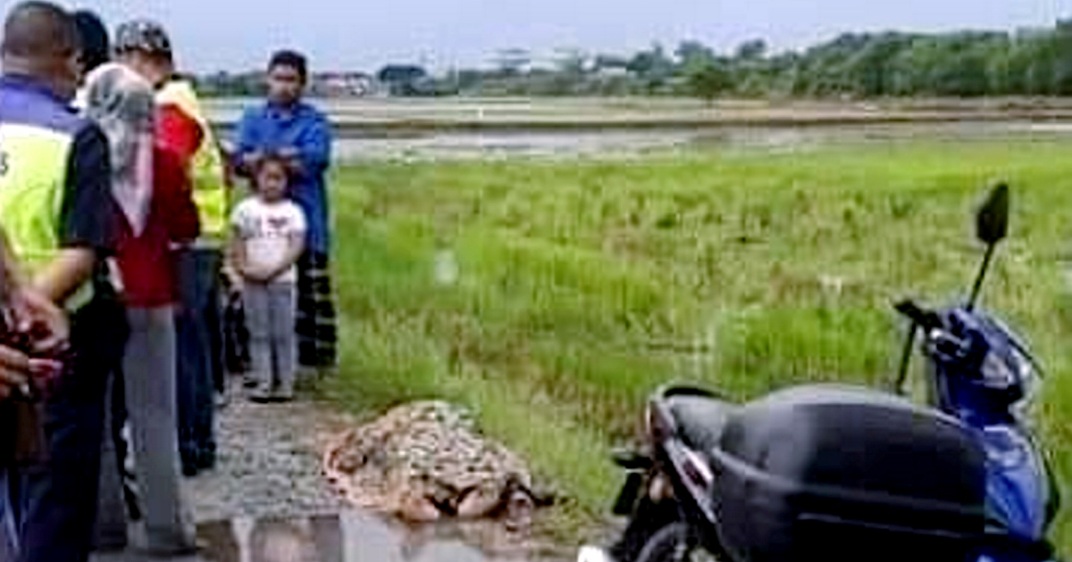 Motorcyclist killed, son hurt in lightning strike while returning from Friday prayer