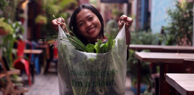 NST Region: 'I'm a plant' eco-bags to help make Cambodia cleaner