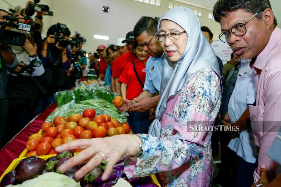 So far the programme shows positive impact on those receiving the aid, Dr Wan Azizah said. NSTP/AIZUDDIN SAAD