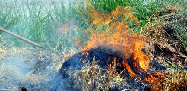 Pdf The Communication On Enforcement Of Open Burning Cases In Malaysia