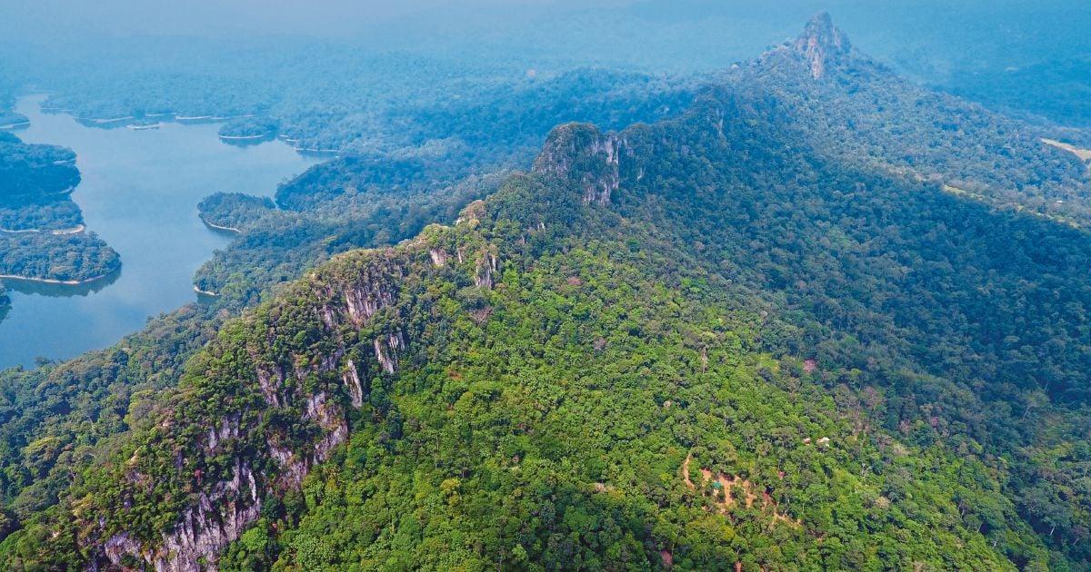 Appreciate social, environmental benefits of protected areas