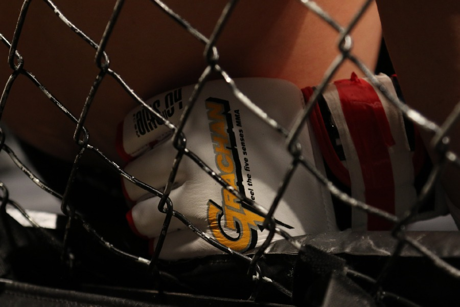 In a bid to change the perception of mixed martial arts (MMA) and to fight for the welfare of journalists in the country, journalist Haresh Deol will take on professional fighter Shareh 'The Jeneral' Nasrullah in Fight for Change 2019. (Image by Pixabay: For illustration purposes only)