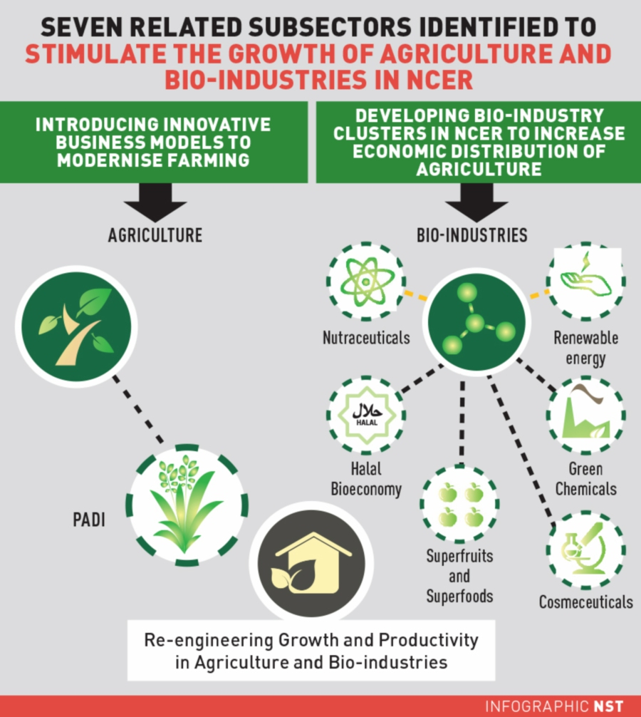 Modernising agriculture in NCER