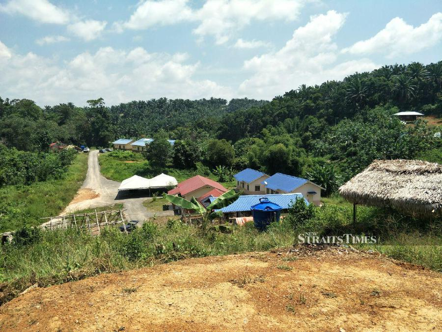 Orang Asli abandon village, flee into forest to escape Covid-19