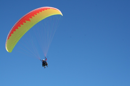 Japanese man dies in India paragliding accident   New Straits Times
