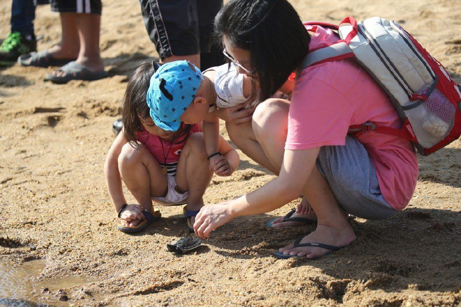 (File pix) Parents and children take part in terrapin release programme held at Sungai Kemaman, Terengganu recently. Pix by Vera D'Elisa Nieuwenhuis
