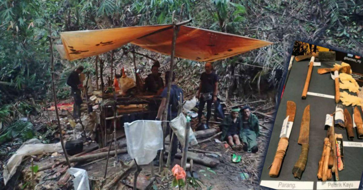 Xavier Hails Highest Fine Slapped On Two Vietnam Poachers