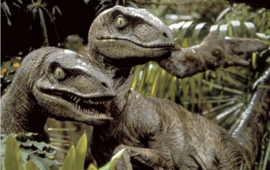 Dinosaurs beheaded at Australian museum | New Straits ...