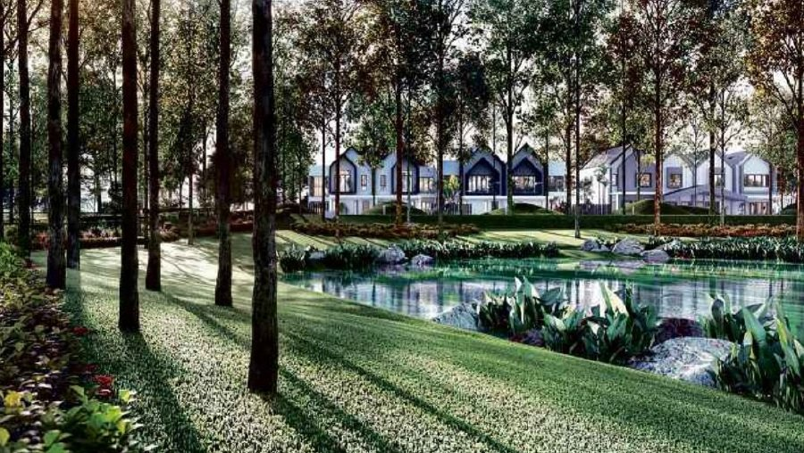 (File pix) Lush greenery with tall trees provide a cooling effect.